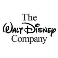 Stratiscope provides community engagement services, training, and community branding services to companies like Walt Disney.