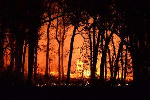 California wildfire cascading crises