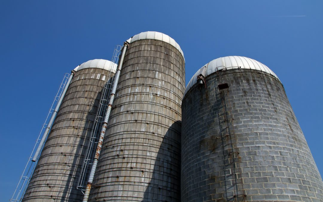 Silo-Busting: Breaking Down Your Barriers to Achieve Your Leadership Goals Faster